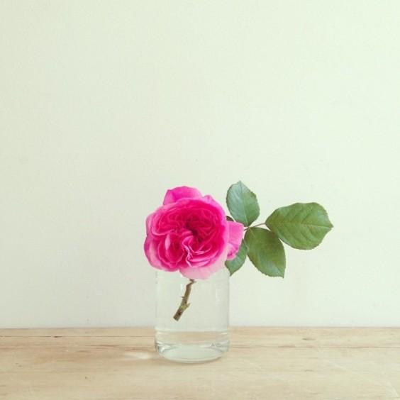 aromas-florais