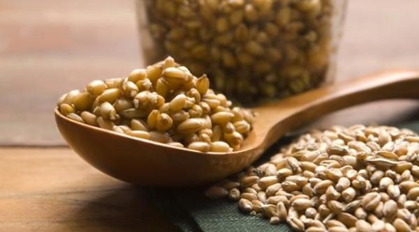 germen-de-trigo-beneficios-saude