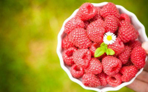6972846-raspberry-flower