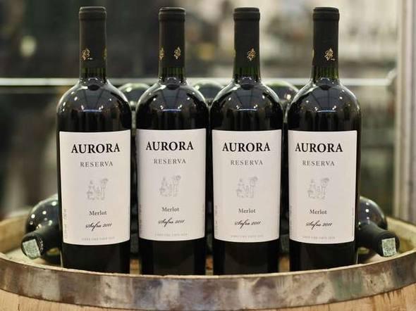 Aurora Merlot